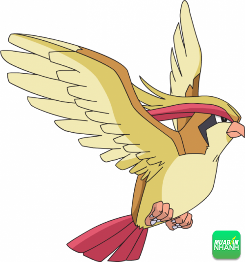 Pokemon Mega Pidgeot